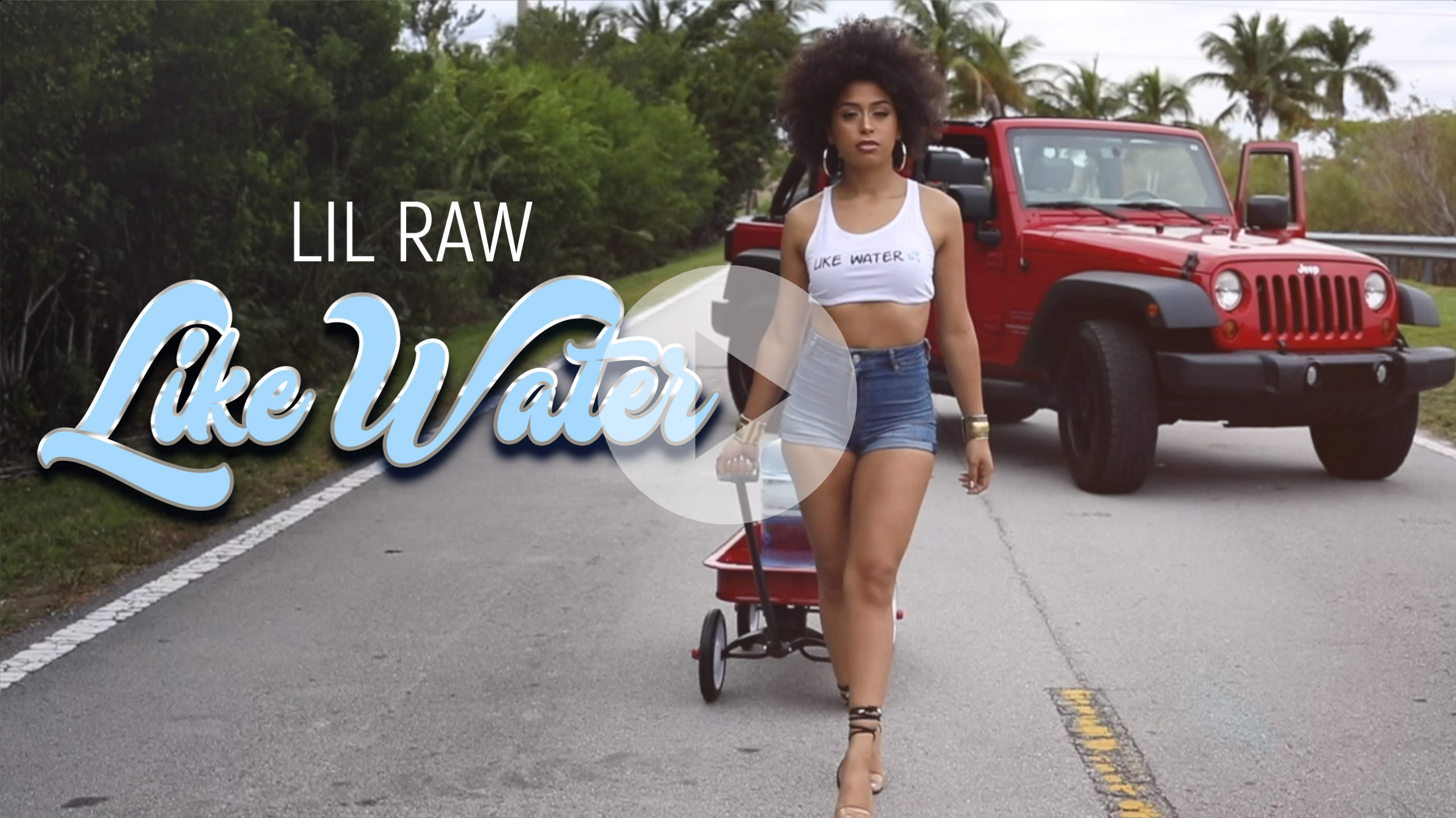 Like Water Official Video